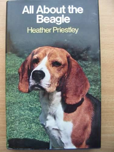 Photo of ALL ABOUT THE BEAGLE written by Priestley, Heather published by Pelham Books (STOCK CODE: 573090)  for sale by Stella & Rose's Books