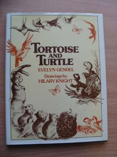 Photo of TORTOISE AND TURTLE written by Gendel, Evelyn illustrated by Knight, Hilary published by Macdonald and Jane's (STOCK CODE: 576837)  for sale by Stella & Rose's Books