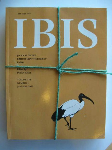Photo of IBIS VOLUME 135 written by Jones, Peter published by British Ornithologists' union (STOCK CODE: 577247)  for sale by Stella & Rose's Books