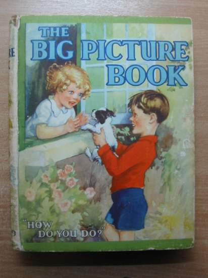 Photo of THE BIG PICTURE BOOK- Stock Number: 588845