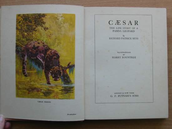 Photo of CAESAR THE LIFE STORY OF A PANDA LEOPARD written by Russ, Richard Patrick