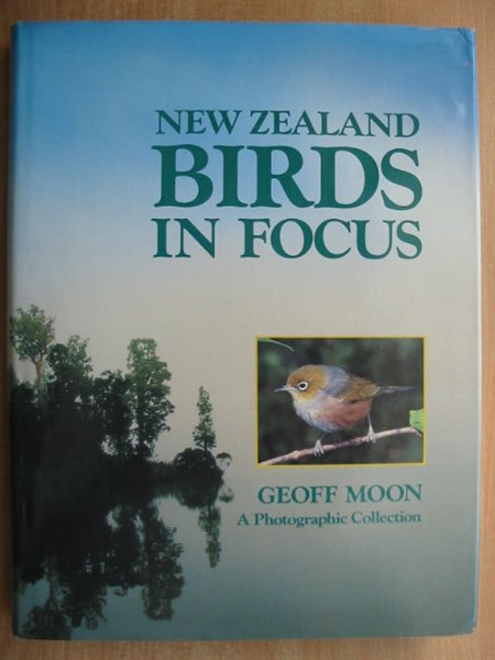 Photo of NEW ZEALAND BIRDS IN FOCUS written by Moon, Geoff published by Weldon (STOCK CODE: 589783)  for sale by Stella & Rose's Books