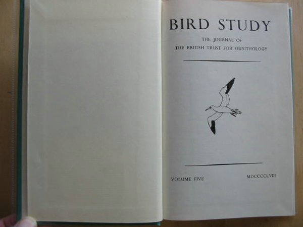 Photo of BIRD STUDY VOLUMES 5-6- Stock Number: 590603