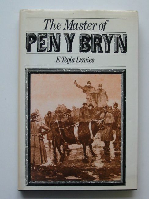 Photo of THE MASTER OF PEN Y BRYN- Stock Number: 592163