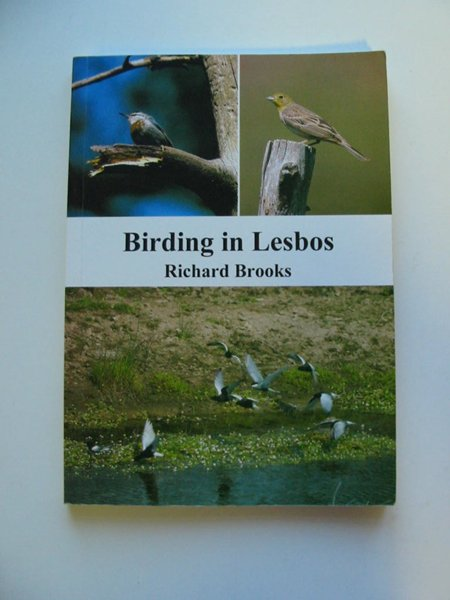 Photo of BIRDING IN LESBOS- Stock Number: 595001