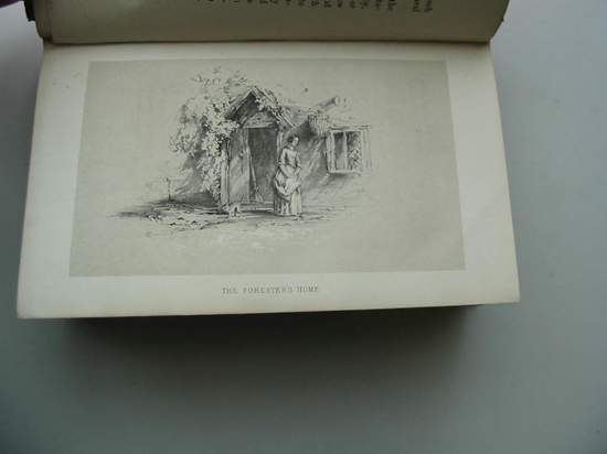 Photo of EXMOOR written by Hall, Herbert Byng illustrated by Hall, Herbert Byng published by Thomas Cautley Newby (STOCK CODE: 597377)  for sale by Stella & Rose's Books