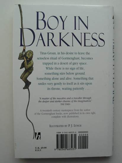Photo of BOY IN DARKNESS written by Peake, Mervyn illustrated by Lynch, P.J. published by Hodder Children's Books (STOCK CODE: 598883)  for sale by Stella & Rose's Books