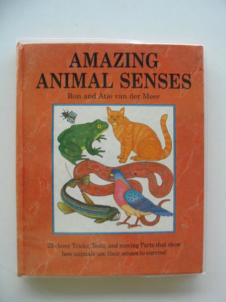 Photo of AMAZING ANIMAL SENSES- Stock Number: 604742
