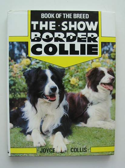 Photo of THE SHOW BORDER COLLIE written by Collis, Joyce published by Ringpress Books (STOCK CODE: 627505)  for sale by Stella & Rose's Books