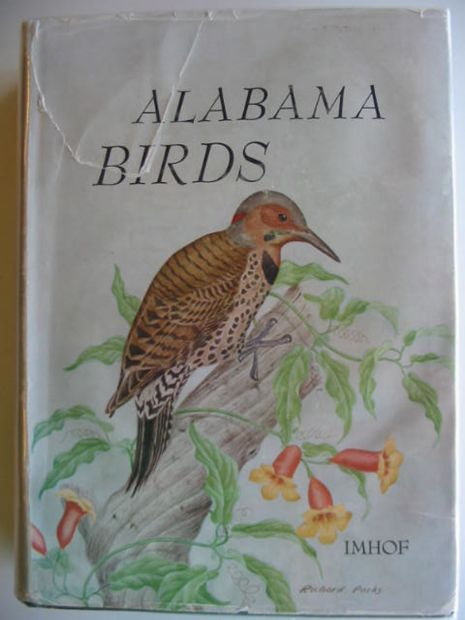 Photo of ALABAMA BIRDS- Stock Number: 661816