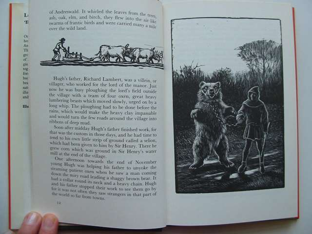 Photo of LORD OF THE FOREST written by BB,  illustrated by BB,  published by Methuen Children's Books (STOCK CODE: 813624)  for sale by Stella & Rose's Books