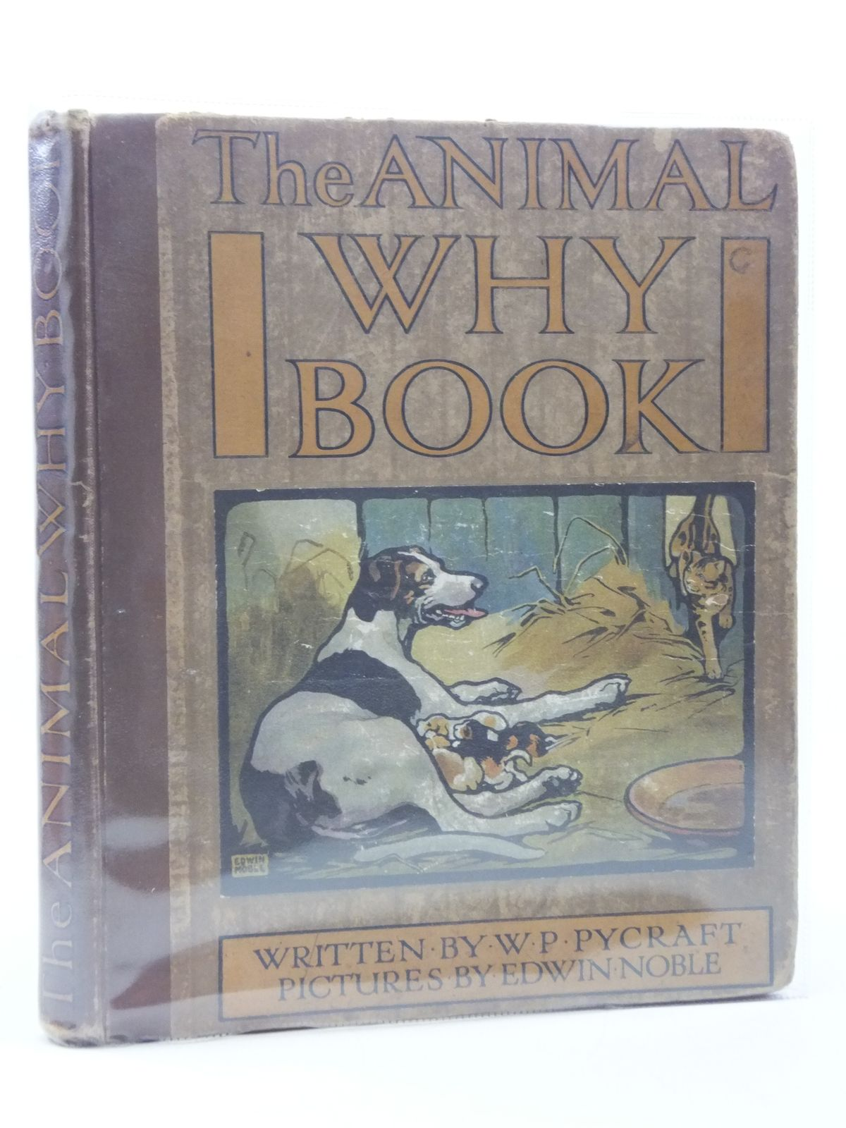 Photo of THE ANIMAL WHY BOOK- Stock Number: 988076